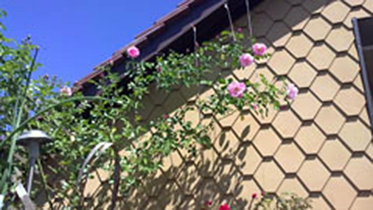 Bubikon, Eternitfassade